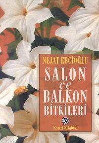 Salon ve Balkon Bitkileri