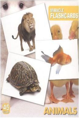 Miracle FlashCards| Animals; 45 Cards