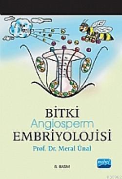 Bitki Embriyolojisi Angiosperm