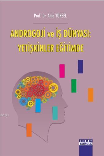 Androgoji ve İş Dünyası: Yetişkinler Eğitimde