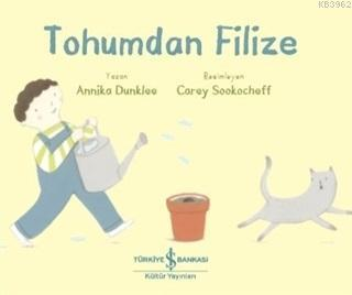 Tohumdan Filize