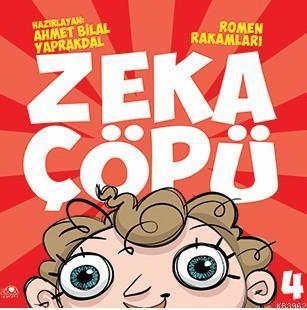 Zeka ÇÖpü-4; Romen Rakmaları