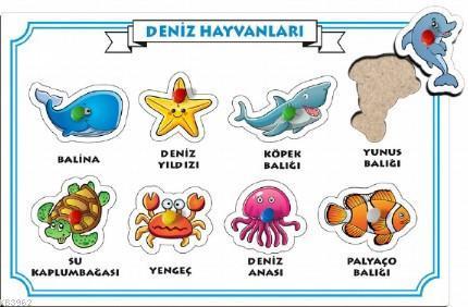 Deniz Hayvanları