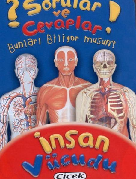 İnsan Vücudu Kart Sorular ve Cevaplar Dizisi 3
