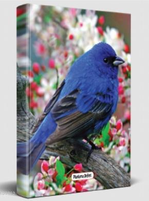 Süresiz Planlama Defteri - Kuş Bakışı