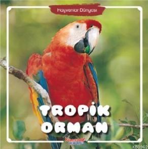 Hayvanlar Dünyası Tropik Orman
