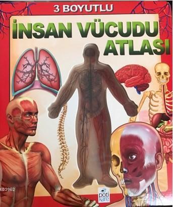 3 Boyutlu İnsan Vücudu Atlası