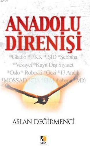 Anadolu Direnişi