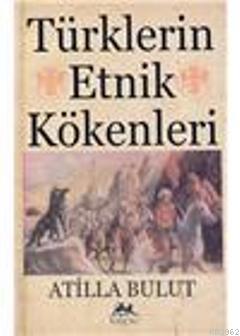 Türklerin Etnik Kökenleri