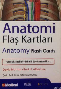 Anatomi Flaş Kartları