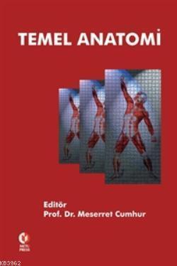Temel Anatomi