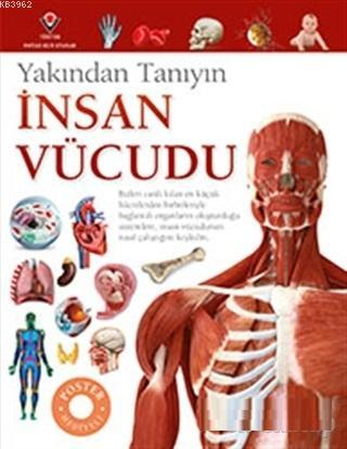 İnsan Vücudu - Yakından Tanıyın