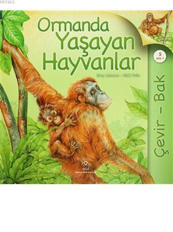 çevir Bak Ormanda Yaşayan Hayvanlar Ciltli Jinny Johnson Nicki
