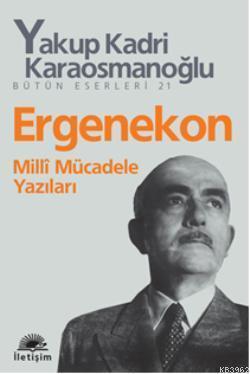 Ergenekon; Milli Mücadele Yazıları