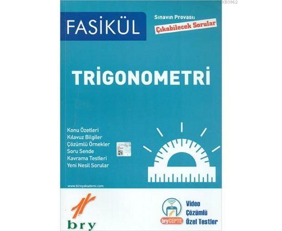 Birey - Trigonometri