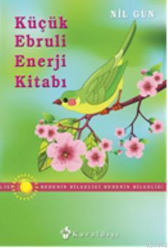 Küçük Ebruli Enerji Kitabı