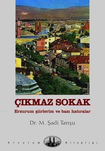 Çıkmaz Sokak; Erzurum Şiirleri ve Bazı Hatıralar