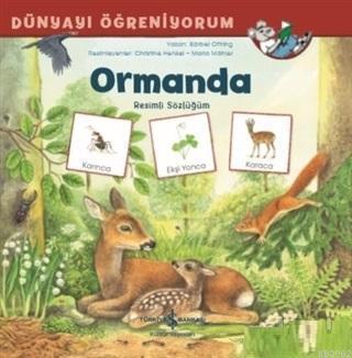 Ormanda - Dünyayı Öğreniyorum Resimli Sözlüğüm