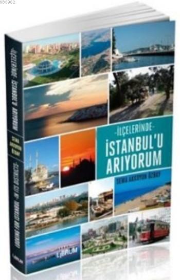 İlçelerinde İstanbul'u Arıyorum