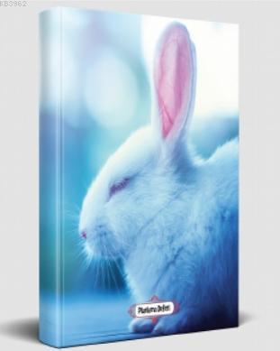 Süresiz Planlama Defteri - Uykucu Tavşan