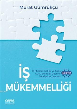 İş Mükemmelliği; İş Mükemmelliği ve Satış Gücü Etkinliği Üzerine Türkiye'de Yazılmış İlk Kitap