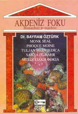 Akdeniz Foku