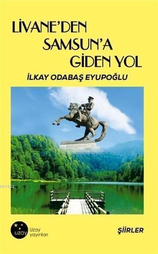 Livane'den Samsun'a Giden Yol