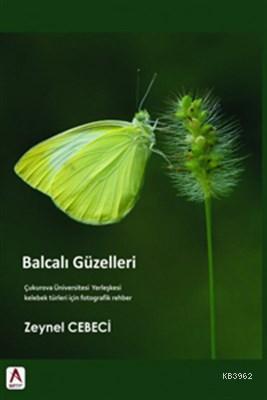 Balcalı Güzelleri Çukurova Üniversitesi Yerleşkesi Kelebek Türleri için Fotografik Rehber