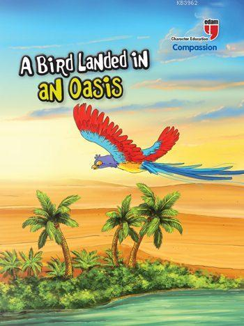 A Bird Landed in an Oasis - Compassion; Stories with the Phoenix