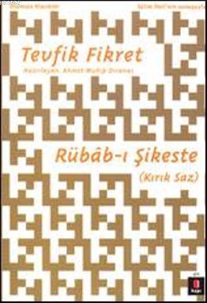 Rübâb-ı Şikeste; Kırık Saz