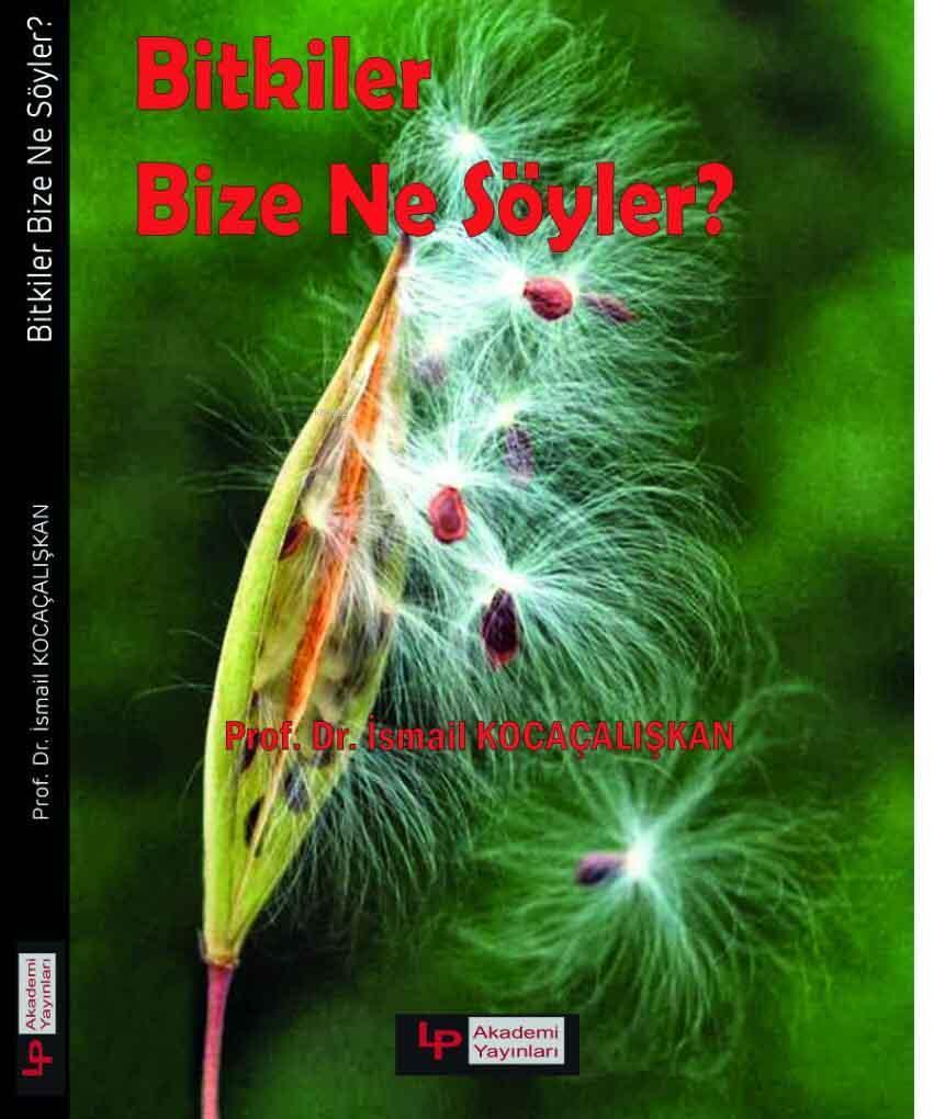 Bitkiler Bize Ne Söyler?