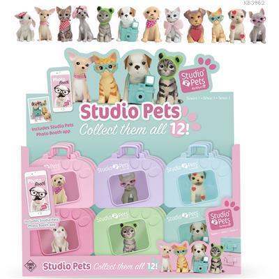 Basel Studio Pets Evcil Hayvanlar