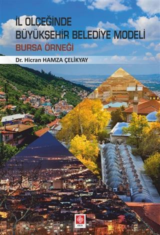 İl Ölçeğinde Büyükşehir Belediye Modeli; Bursa Örneği