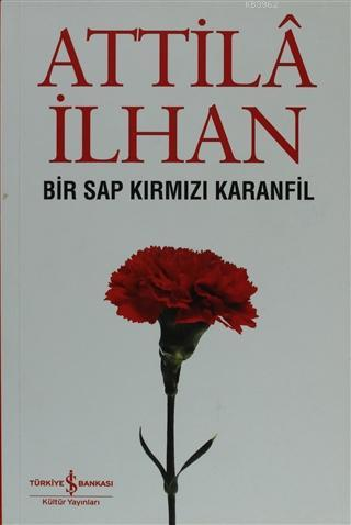 Bir Sap Kırmızı Karanfil Cumhuriyet Söyleşileri (Eylül '96 - Mart '97)