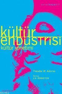 Kültür Endüstrisi; Kültür Yönetimi
