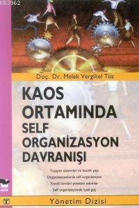 Kaos Ortamında Self Organizasyon Davranışı