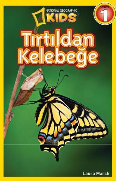 Tırtıldan Kelebeğe