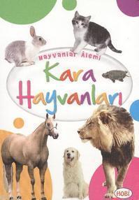 Hayvanlar Alemi; Kara Hayvanları
