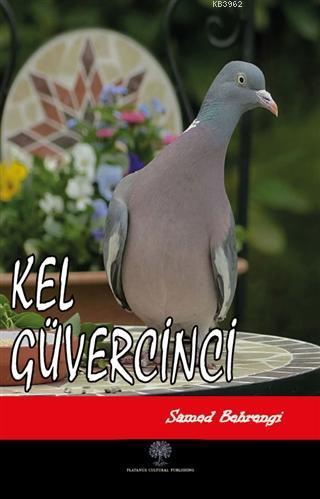 Kel Güvercinci