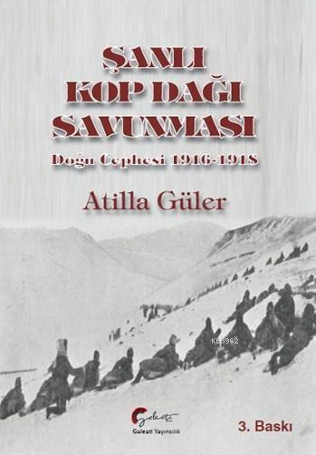 Şanlı Kop Dağı Savunması,  Doğu Cephesi, 1916-1918