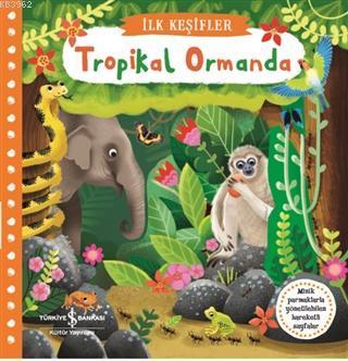 Tropikal Ormanda - İlk Keşifler
