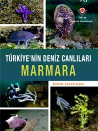Marmara - Türkiye'nin Deniz Canlıları Ciltli