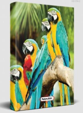Süresiz Planlama Defteri - Papağan Ailesi
