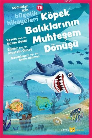Köpek Balıklarının Muhteşem Dönüşü - Çocuklar İçin Bilgelik Hikayeleri 13