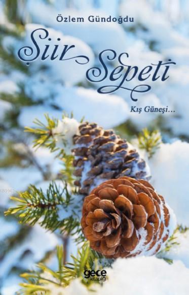 Şiir Sepeti; Kış Güneşi