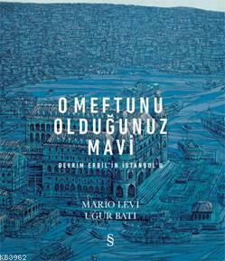 O Meftunu Olduğunuz Mavi; Devrim Erbil'in İstanbul'u