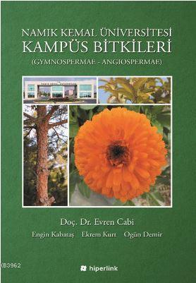 Namık Kemal Üniversitesi Kampüs Bitkileri; Gynospermae - Angiospermae