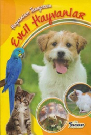 Hayvanları Tanıyorum Evcil Hayvanlar