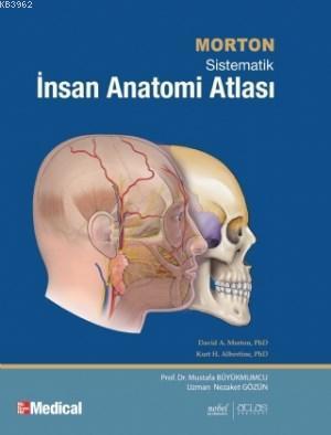 Morton İnsan Anatomisi