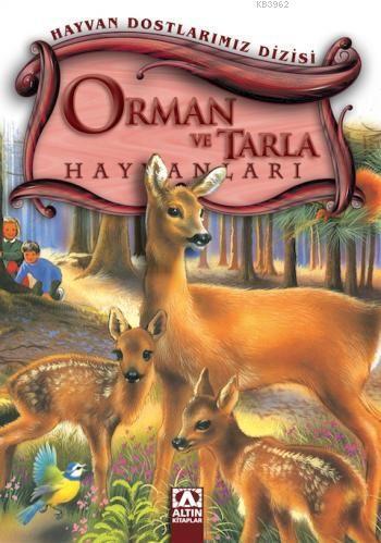 Orman ve Tarla Hayvanları; Hayvan Dostlarımız Dizisi